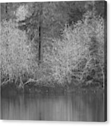 Filter Series 200b Canvas Print by Jeni Gray