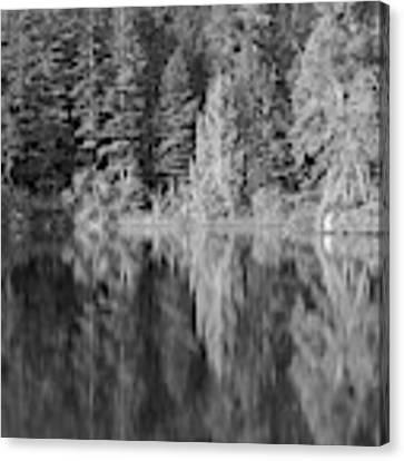 Filter Series 300a Canvas Print by Jeni Gray