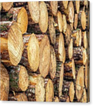Firewood  Canvas Print by Nick Bywater