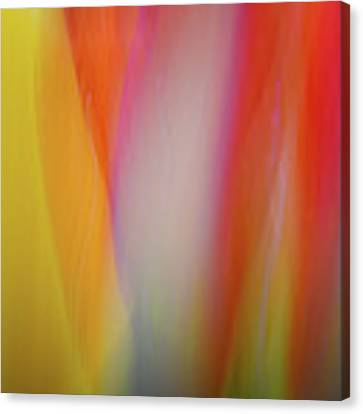 Flame Canvas Print by Michael Hubley