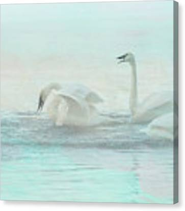 Four Swans Watercolor Group Play Canvas Print by Patti Deters
