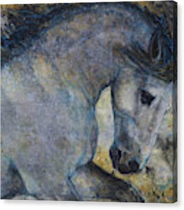 Gentle Spirit Canvas Print by Jani Freimann