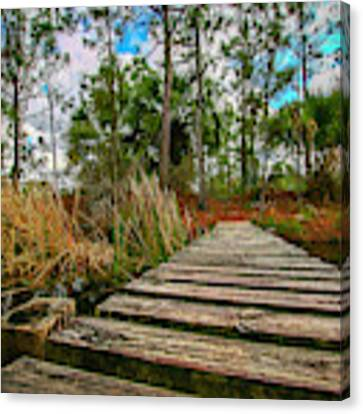 Halpatiokee Footbridge Canvas Print by Tom Claud