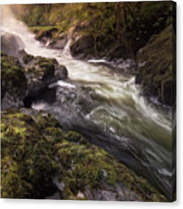The Teifi At Henllan Falls Canvas Print by Elliott Coleman