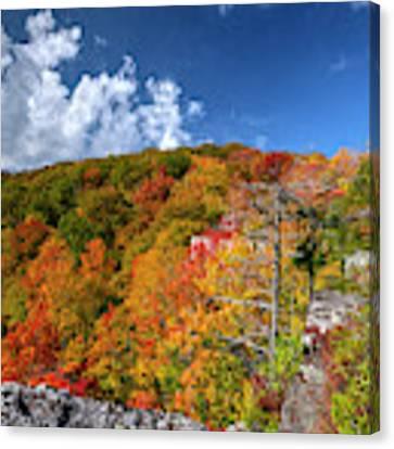 Hillside Of Color Canvas Print by Dan Friend