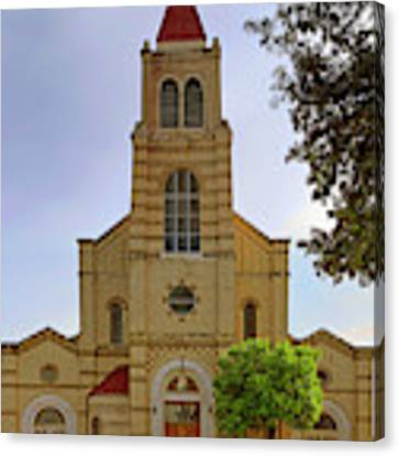 Immaculate Heart Of Mary Church - San Antonio - Texas Canvas Print by Jason Politte