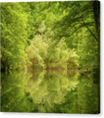 In The Heart Of Nature Canvas Print by Mirko Chessari