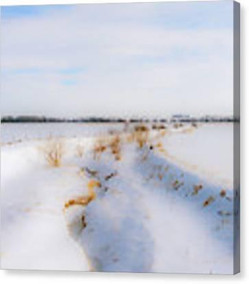 Iowa Winter Wonder Land Canvas Print by Edward Peterson