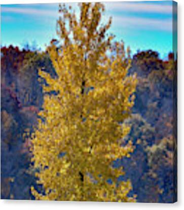 Jogger On Trail In Fall Canvas Print by Dan Friend
