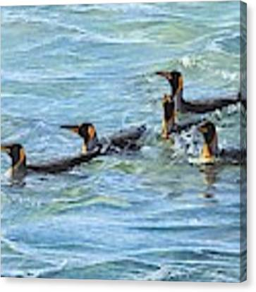 King Penguins Swimming Canvas Print by Alan M Hunt