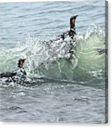 King Penguins Swimming In The Waves Canvas Print by Alan M Hunt