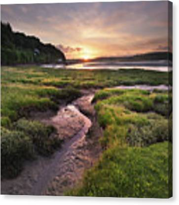 Laugharne Estuary At Sunrise Canvas Print by Elliott Coleman