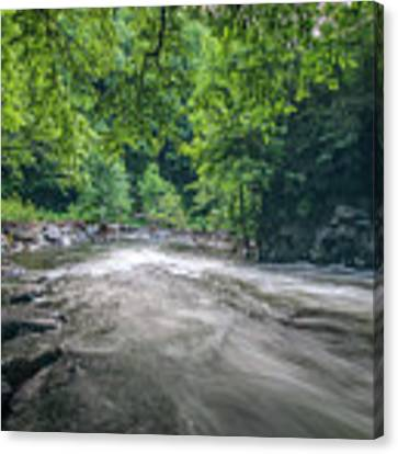 Mountain Stream In Summer #1 Canvas Print by Tom Claud