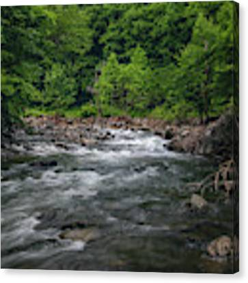 Mountain Stream In Summer #2 Canvas Print by Tom Claud