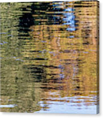 Muted Reflections Canvas Print by Kate Brown