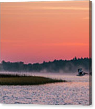 Pelican Mist Canvas Print by Patti Deters