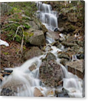 Seasonal Waterfall - Franconia Notch, New Hampshire Canvas Print by Erin Paul Donovan