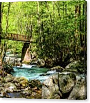 Smokey Mountain Waterfall With Bridge Dsc_0535 Canvas Print by Michael Thomas