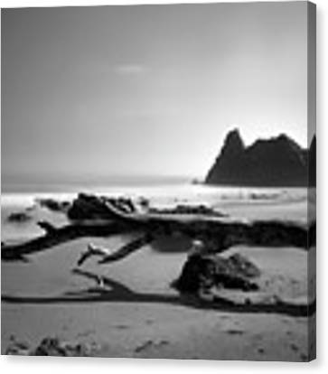 St Cyrus Beach - Scotland - Black And White Canvas Print by Jason Politte