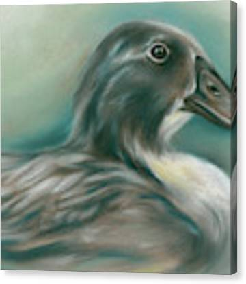 Swedish Blue Duck Canvas Print by MM Anderson