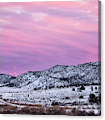The Long Way Home Canvas Print by Denise Bush