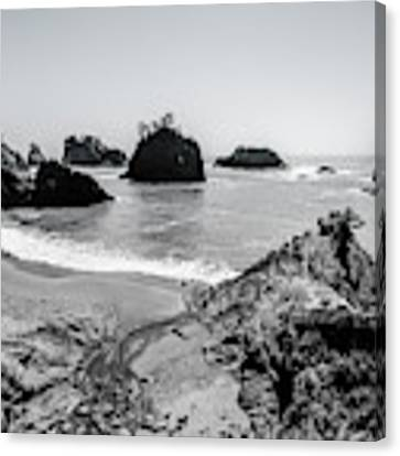 The Oregon Coast In Black And White Canvas Print by Margaret Pitcher