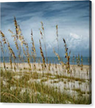 Through The Sea Oats Canvas Print by Judy Hall-Folde