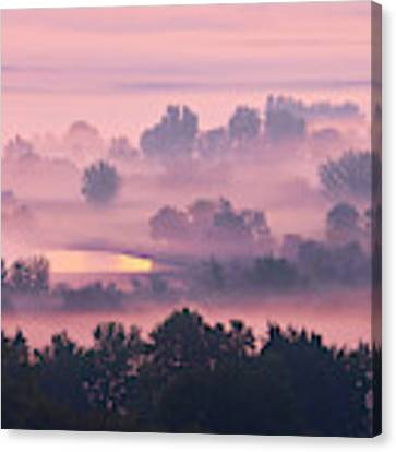 Trees In The Mist Canvas Print by Whitney Goodey
