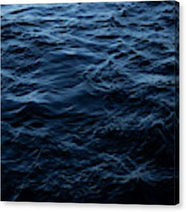 Water Canvas Print by Eric Christopher Jackson