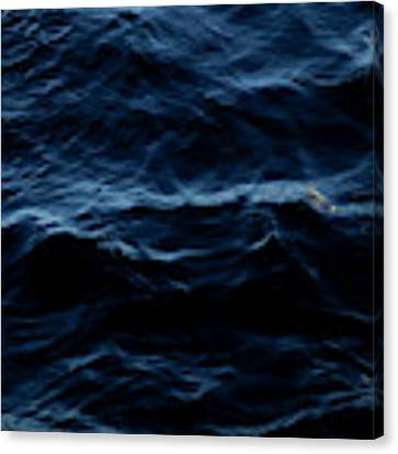Water, No.2 Canvas Print by Eric Christopher Jackson