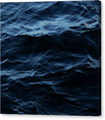 Water, No.3 Canvas Print by Eric Christopher Jackson