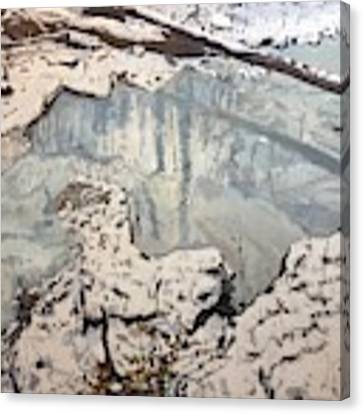 Winter Reflections Canvas Print by Thomas Stead