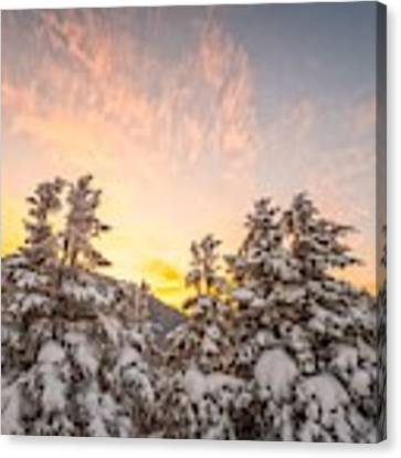 Winter's Last Light, Canvas Print by Jeff Sinon