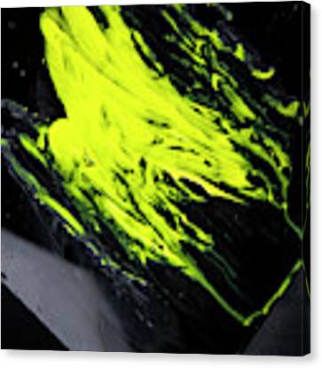 Yellow, No.8 Canvas Print by Eric Christopher Jackson