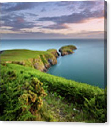 Ynys Lochtyn Summer Sunrise Canvas Print by Elliott Coleman