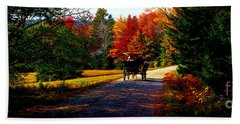 Hand Towel featuring the photograph  Acadia National Park Carriage Trail Fall  by Tom Jelen