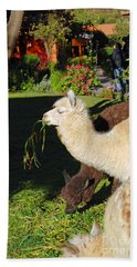 Bath Towel featuring the digital art  Alpacas by Eva Kaufman