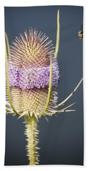 Beautiful Flowering Teasel Bath Towel