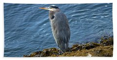 Bath Towel featuring the photograph  Blue Heron On A Rock by Eti Reid