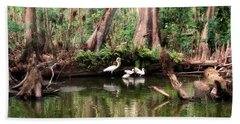 Cypress Swamp  Hand Towel