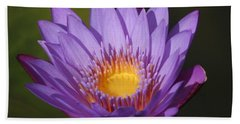 Purple Water Lily Hand Towel