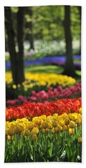 Hand Towel featuring the photograph 090811p124 by Arterra Picture Library