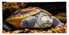 Sea Turtle Hand Towel by Savannah Gibbs