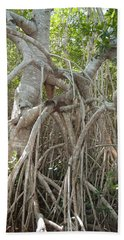 Aerial Roots Hand Towel
