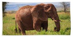 African Desert Elephant Hand Towel