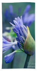 Agapanthus Orientalis - Lily Of The Nile Bath Towel