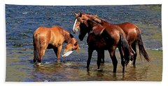 Arizona Wild Horses On The Salt River Bath Towel