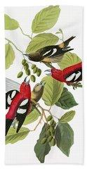 Audubon Crossbill Hand Towel
