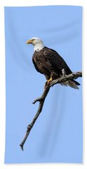 Bald Eagle 6 Bath Towel
