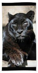 Black Leopard Hand Towel by Savannah Gibbs